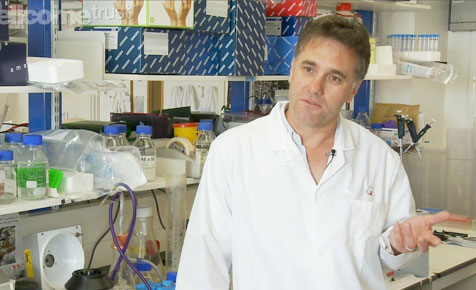 Richard Marais (Ричард Марэ), professor of Molecular Oncology at the Institute of Cancer Re-search in London